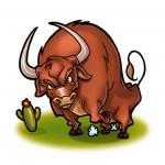 Buckaroos Bull Symbol